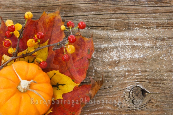 Autumn Background With Copyspace | Stock Photo