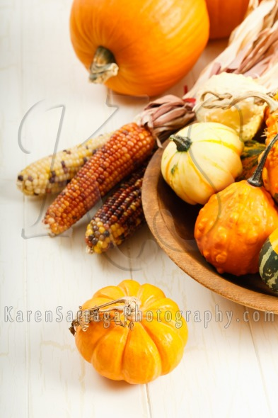 Colorful Autumn Gourds And Pumpkins | Stock Photo