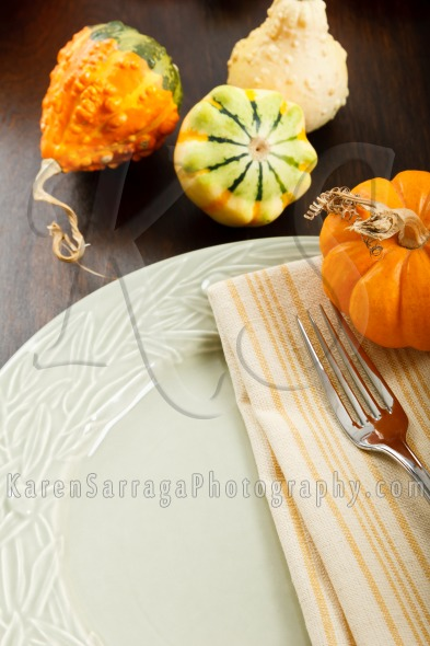 Autumn Table Setting With Gourds | Stock Photo