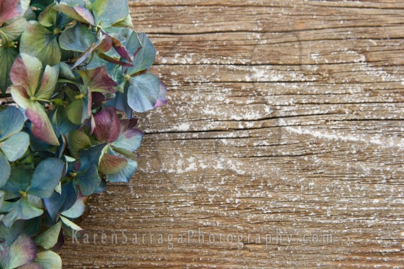 Blue Hydrangea On Wood Background