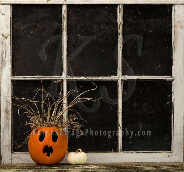 A Surprised Halloween Jack-O-Lantern | Stock Photo