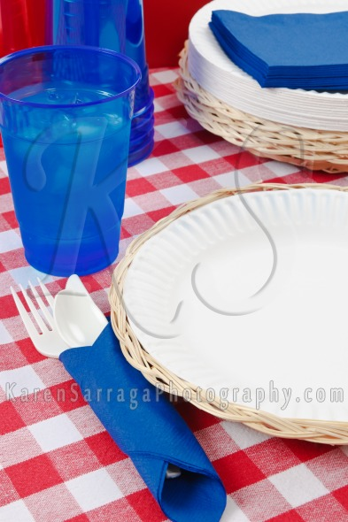 Summer Picnic Table Setting | Stock Photo